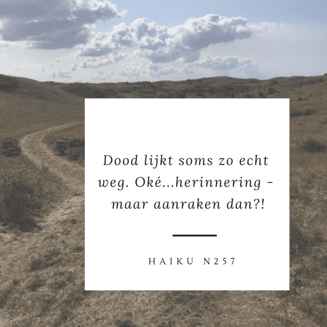 Haiku n257 dood